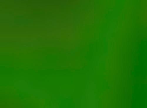 Нержавеющая сталь под зеленый булат